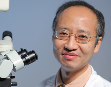 Portrait of Dr. Stephen H. Tsang, MD, PhD